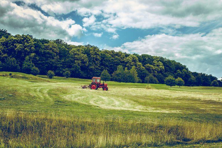 Emmanuel Macron wzywa Europę do implementacji blockchaina w rolnictwie