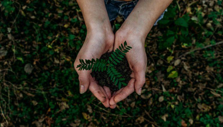 Ekologiczne kopanie kryptowalut jest możliwe?